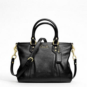 Ashley Leather Mini Tote
